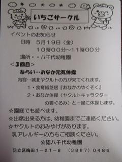 P4250203.JPG